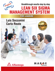 LEAN SIX SIGMA MANAGEMENT SYSTEM